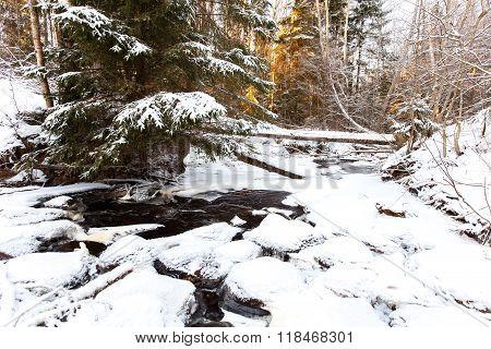 Partly Frozen Stream In Karelian Wood