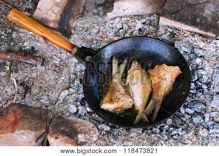 Fried Fish On The Fire In A Skillet.