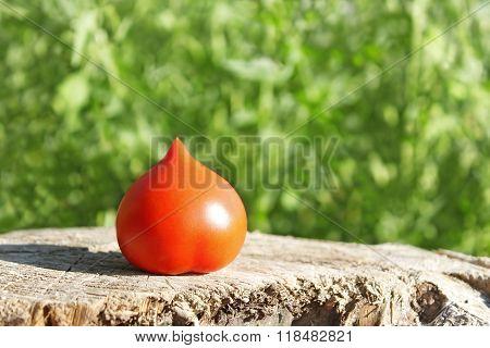 Tomato On Surface Of Old Stump