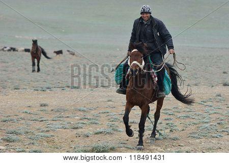 Azerbaijani shepherd on horseback