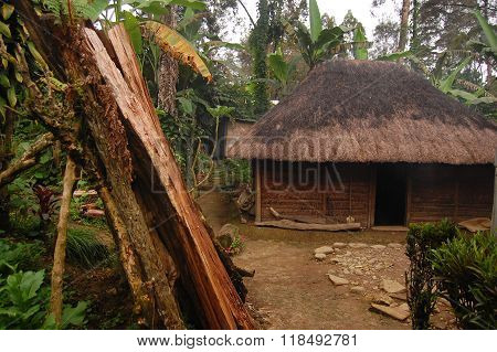 Woodpile near village house at rural area Papua New Guinea