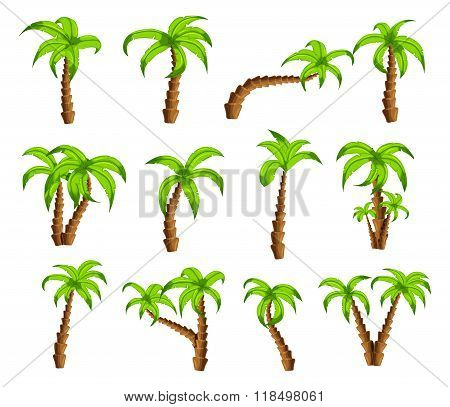 Cartoon green palm trees on a white background. Set of isolated funny cartoon tropical trees pattern