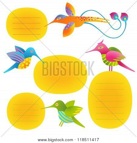 Vector set of text frames and humming-birds.