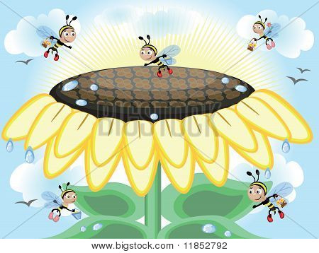 Sunflower and bees,vector
