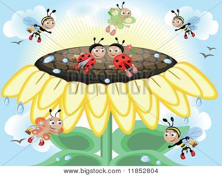 Sunflower and insects,vector