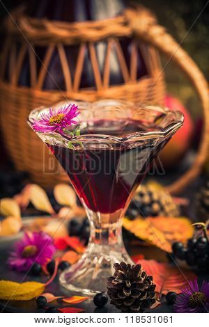 Gifts Autumn Kitchen Sweet Aromatic Drink Tincture Chokeberry