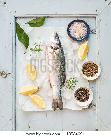 Fresh uncooked seabass fish with lemon, herbs, ice and spices on rustic blue wooden board backdrop