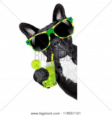 Summer Cokctail Dog