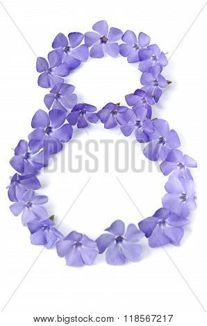 Beautiful Periwinkles In  Shape Of 8 On White Background