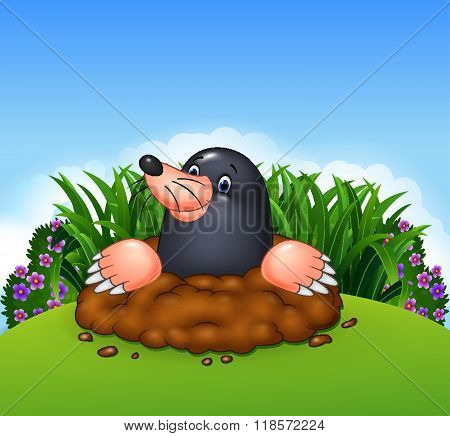 Cartoon funny mole in the jungle