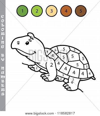 Coloring by numbers turtle