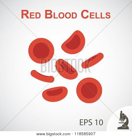 Red Blood Cells ( Flat Design ) On Vignette Background
