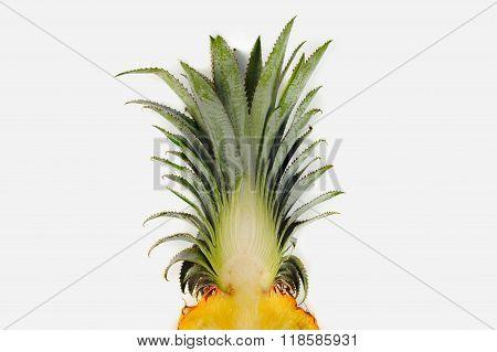 Fresh Florida Pineapple Isolated On White Background