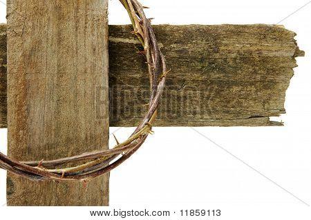 荆棘冠冕,跨 库存照片和库存图片 | bigstock