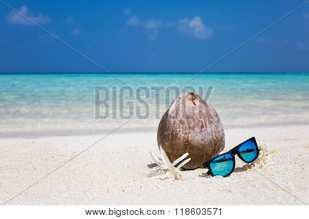 Coconut, flowers and corals on a beach