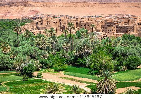 Town And Oasis Of Tinerhir, Morocco