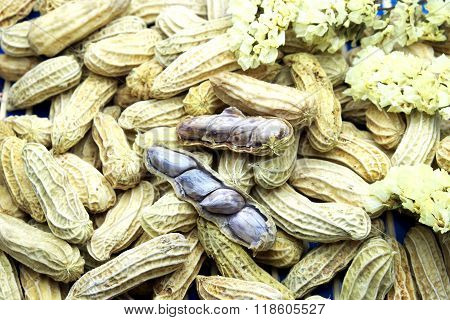 Boiled peanuts with an opened nut