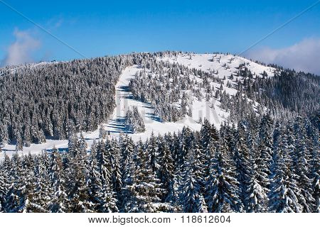 Vibrant aerial panorama of the slope at ski resort, people skiing, snow trees, blue sky