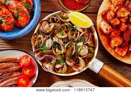 Tapas seafood clams shrimps anchovies shrimps octopus pulpo from Spain