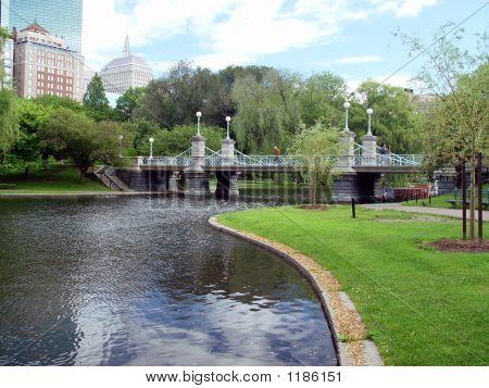 Sunny Public Gardens