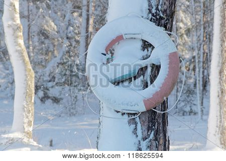 Life Buoy Hanging On A Tree In The Wintry Landscape