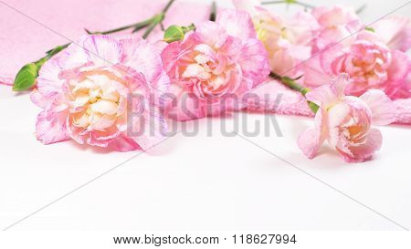 Carnation flower spa with pink towel