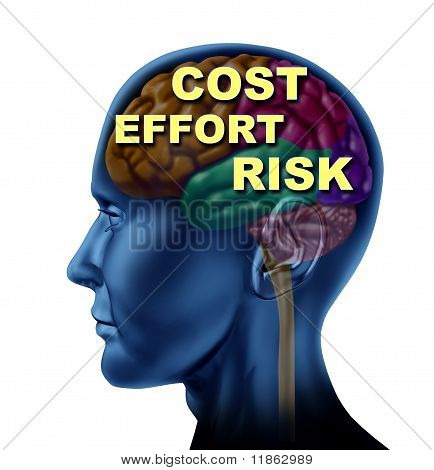 brain finance opportunity cost effort risk
