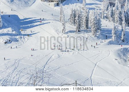 Tourists On A Ski Slope