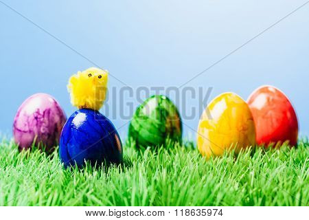 Small Chicked On Painted Easter Egg, Grass And Blue Background