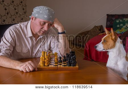 Mature man hard looking on his canine rival while playing in a chess family tournament
