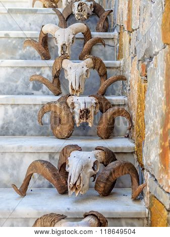 Steps decorated with sheep skull at Crete island