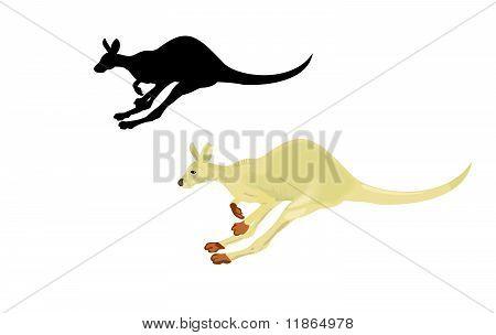 Executando o canguru isolado em um fundo branco