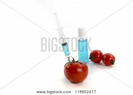 Genetically Modified Tomato Vaccine