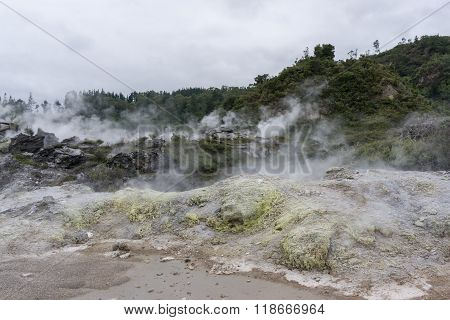 Te Puia Geothermal Valley