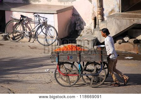 Jaipur, India - November 14: Unidentified Man Pushes Food Cart The Street On November 14, 2014  In J