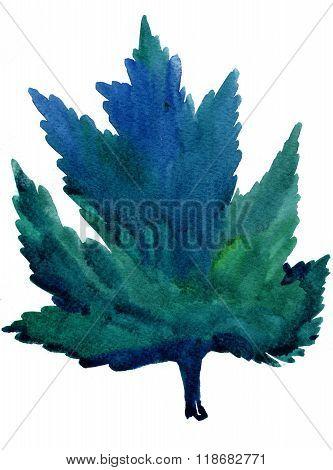 Greening Maple Leaf Aquarelle