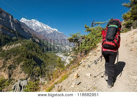 Female hiker ascending a slope.