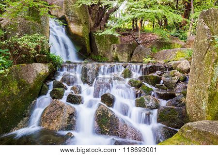 Beautiful Waterfalls In Forest.