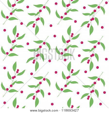 Seamless pattern branches and leaves of camu camu  berries . Floral background. Vector