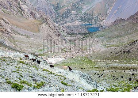 Mountain peak in Fan Mountains