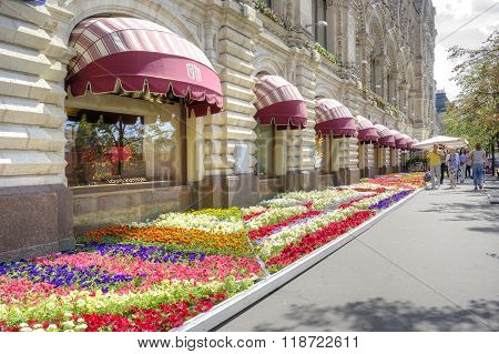 Flower Bed In Front Of Gum