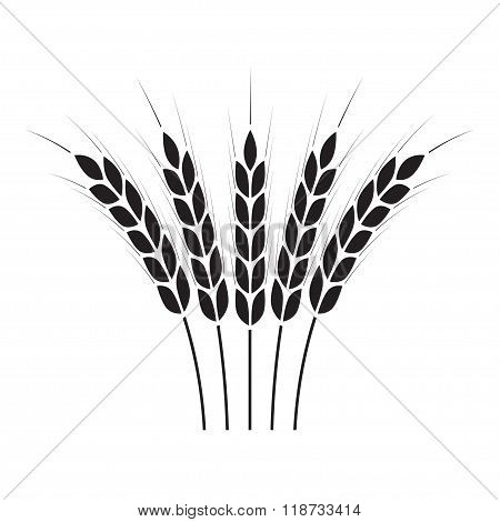 Wheat ears or rice icon. Crop symbol isolated on white background. Vector illustration.