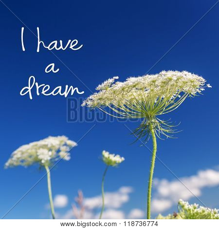 I have a dream Martin Luther King Jr. inspirational quote.