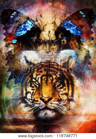 tiger and butterfly wings with woman face. Painting collage and desert crackle.