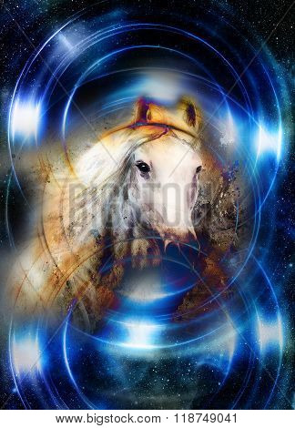 Horse in space, in circle light. Mirror on the planet Earth. Animal concept, Winter effect and blue