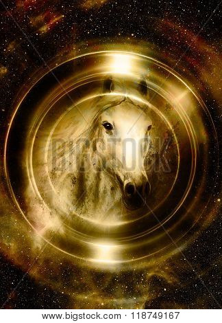 Horse in space, in circle light. Mirror on the planet Earth. Animal concept,  Sepia and light Golden