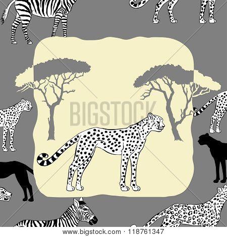 Cheetah between savannah trees