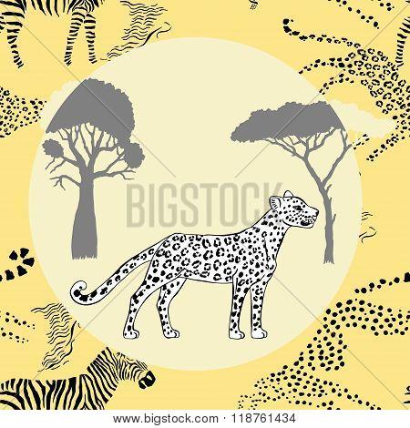 Leopard between savanna trees
