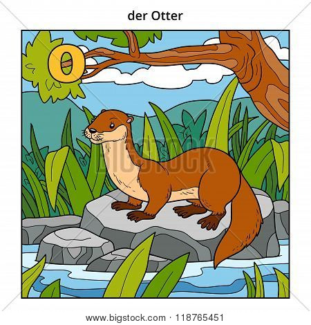German Alphabet, Letter O (otter And Background)