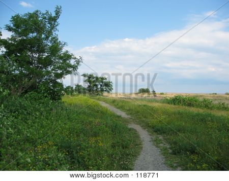 Path To The Sea 2